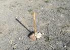 Quante cose si possono imparare con un bastoncino?